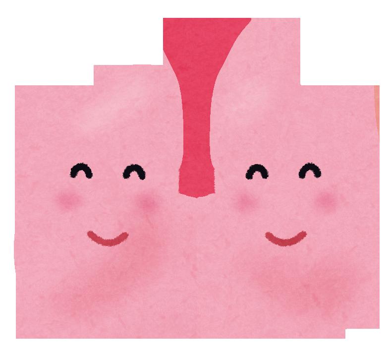 元気な肺のイラスト
