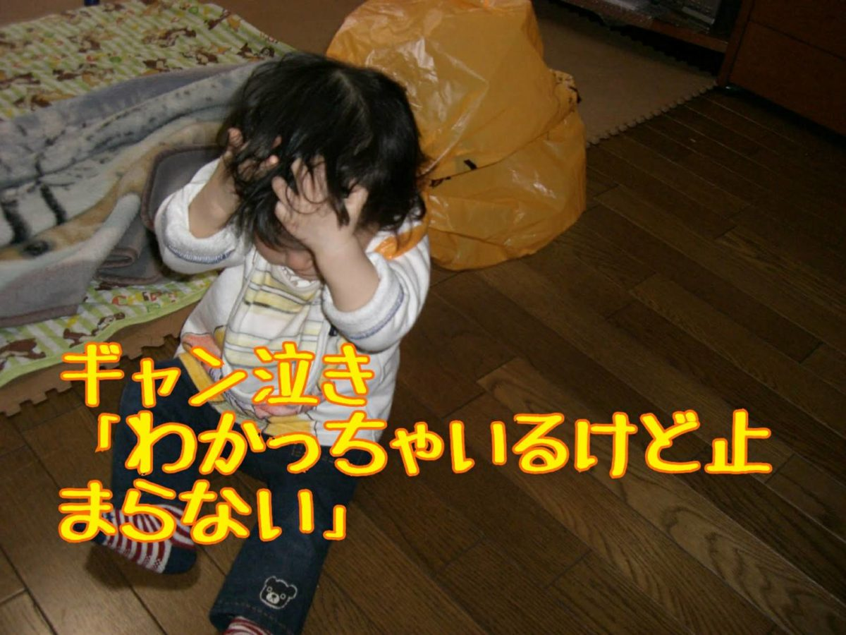 子どものギャン泣きで育つ能力シリーズ⑤「わかっちゃいるけど止まらない」